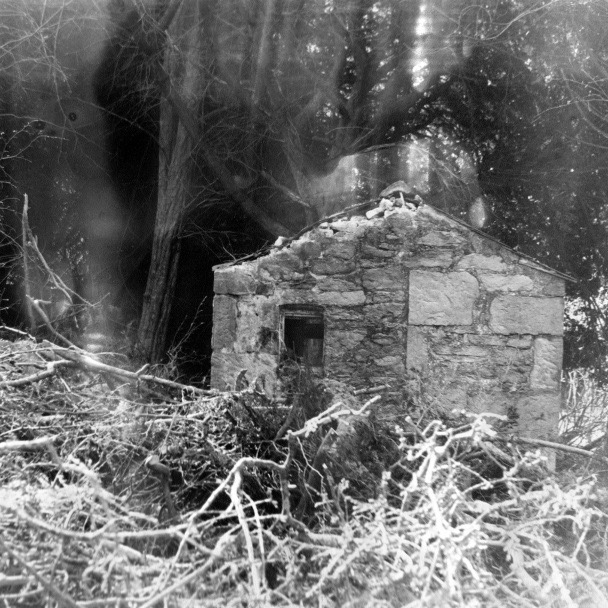 Sharon Harvey, 'Forest Hut'. Hand-developed silver gelatin print, 2011. Copyright the artist.