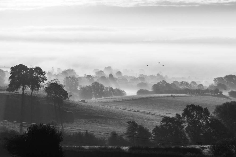 Early autumn morning looking over Ampleforth- October 2012